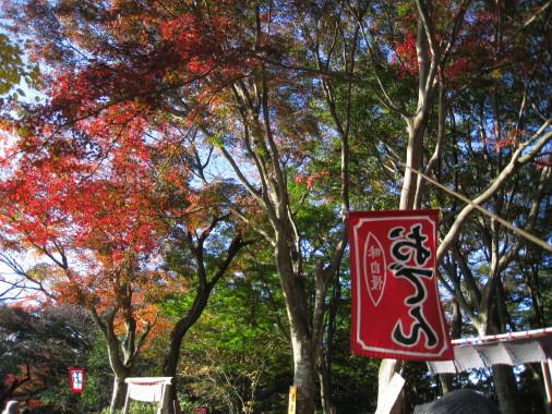 高尾山IMG_0001_3.jpg